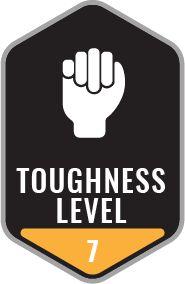 Toughness Level