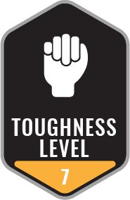 Toughness Level